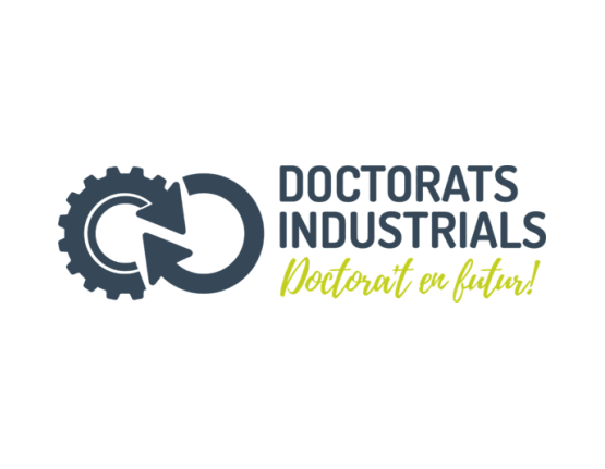 The Industrial Doctorates Plan
